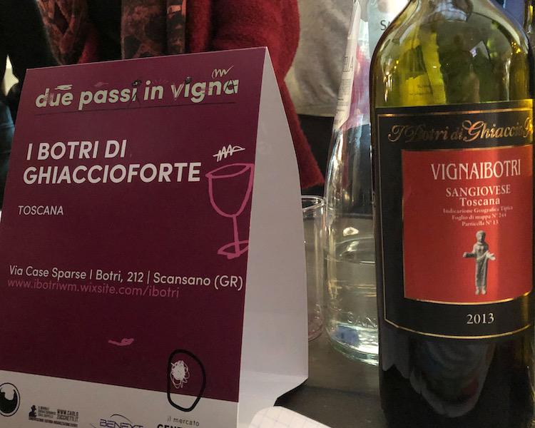 """I BOTRI DI GHIACCIOFORTE: """"VIGNAIBOTRI"""" 2013"""
